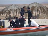 Orca Village. Dyk & Logi paket